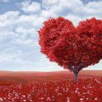 Taman Orang yang Jatuh Cinta